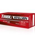 Activlab Tribu Stallion (60 капс)