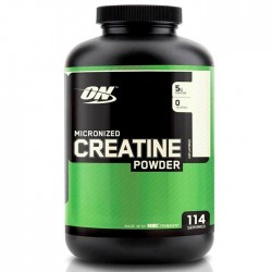 Optimum Nutrition Creatine Powder (600 грамм)