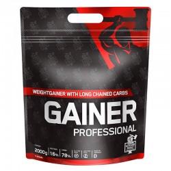 IronMaxx GF Gainer Professional (2000 гр.)